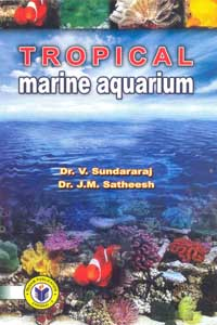 Tropical Marine Aquarium - Tropical Marine Aquarium