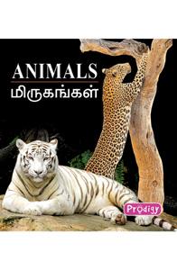 Animals - மிருகங்கள்