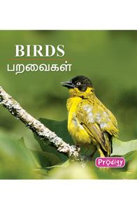 Birds - பறவைகள்