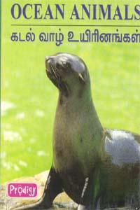 Ocean Animals - கடல் வாழ் உயிரினங்கள்