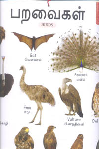 Tamil book My Cute Charts பறவைகள் / BIRDS (Front and Banck)